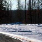 white cloth mulch