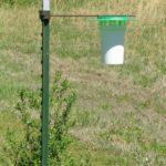 Dry bucket trap